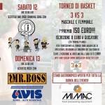 Avis Rock And Ball 2014